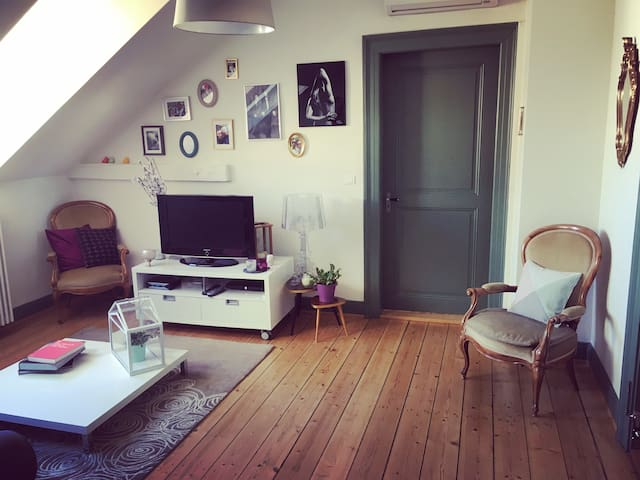 Basel, nice room in a cosy flat
