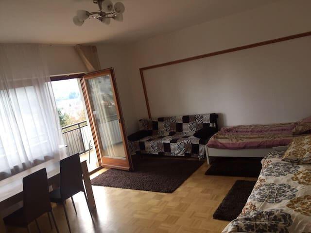 Ferienwohnung in Wertheim mit Burgblick - Wertheim - Apartment