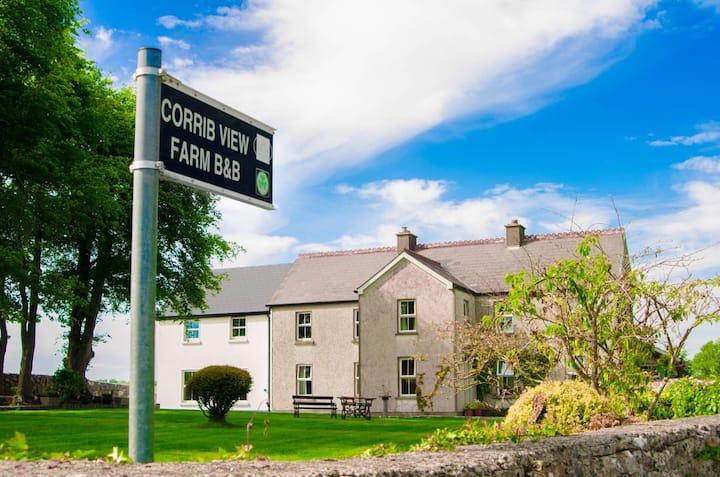 Corrib View Farm double room en-suite