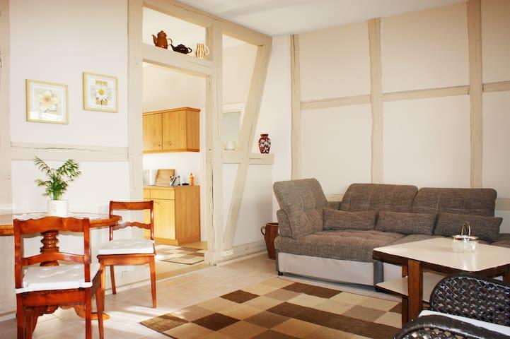 Gemütliche Wohnung im Harz. - Derenburg - Apartemen