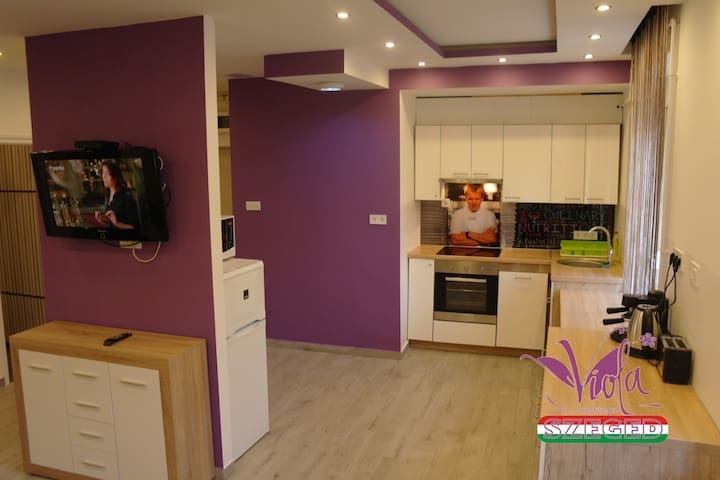 Viola Apartman with sauna near city center