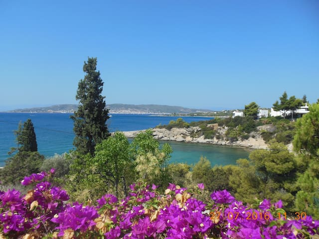 Idyllic villa on a bay, whole house or apt 2) - Aghios Emilianos - Rumah