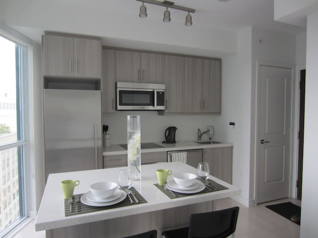 Brand new condo right by Union Station
