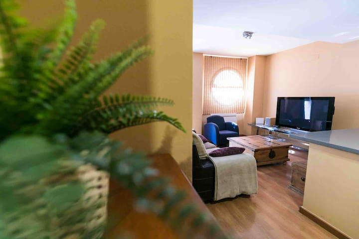 DÚPLEX EN CENTRO DE LA CIUDAD  Apartamento único