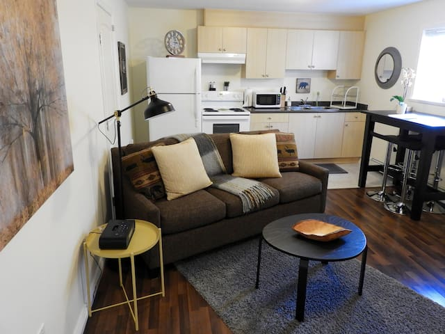 Single Track - 1 bedroom suite in downtown