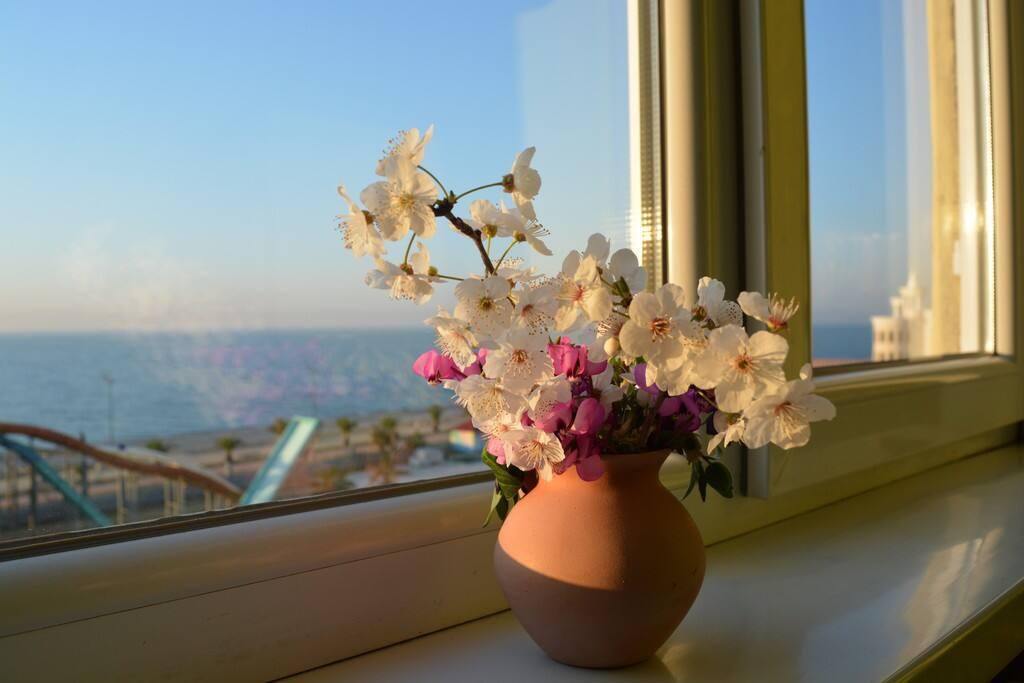 Вид на море, Вид из окна