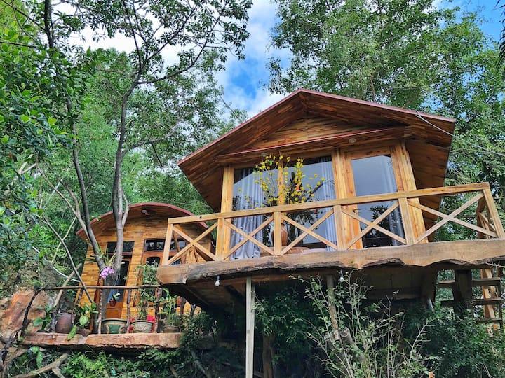 Ann's tree house