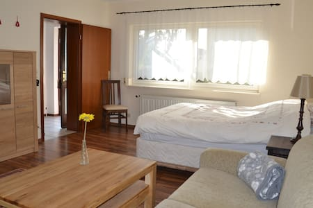 Peaceful apartment next to the vineyards - Appartement