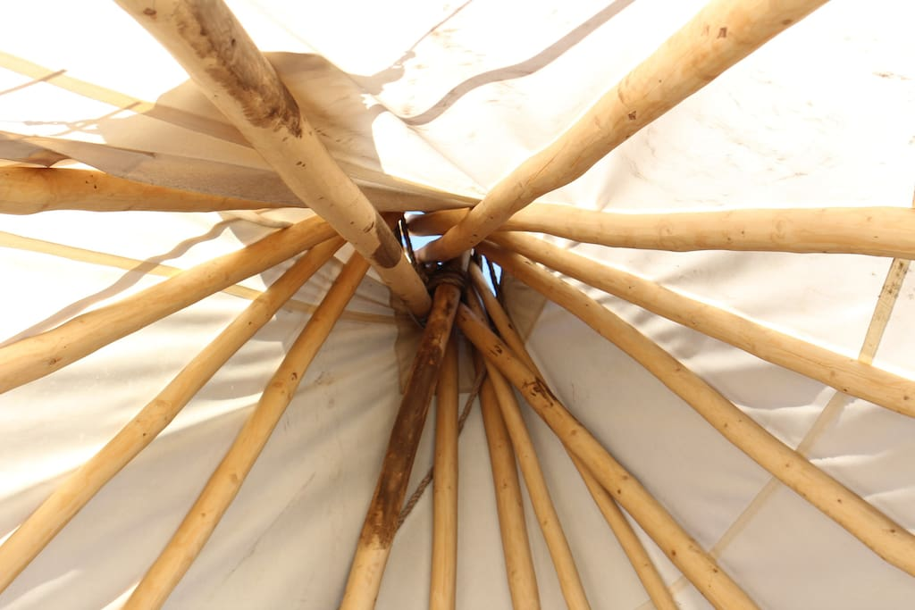 looking up from inside teepee