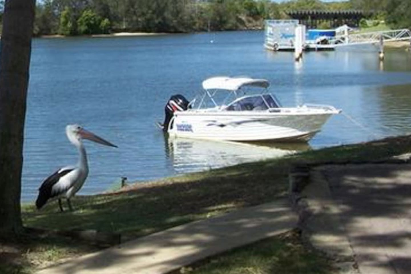 B&B Room in Cabin/Cottage with private deck, Maroochy River on your doorstep, walk through gardens to fish, swim, net for mud-crabs, row to Sunday Markets, Swimming pool just steps from your private deck.  (Fishing gear, Crab Pots & Small Boat Incl.)