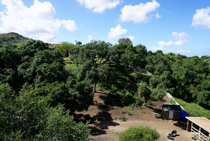 Private studio flat in Elfin Forest - Escondido - Lejlighed