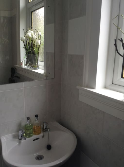 Sink area in shower room with toilet