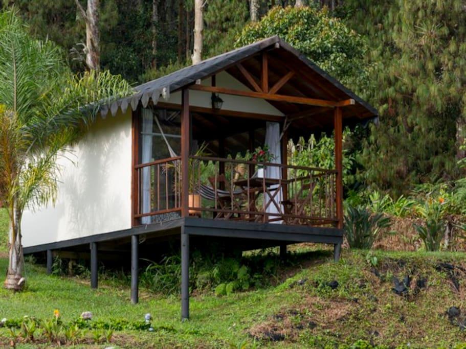 Cabaña bungalow Hotel Pietrasanta