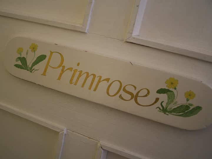 Primrose Double Room - The Ilchester Arms Hotel