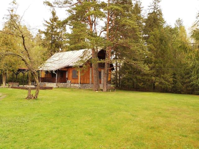Chata pri lesíku