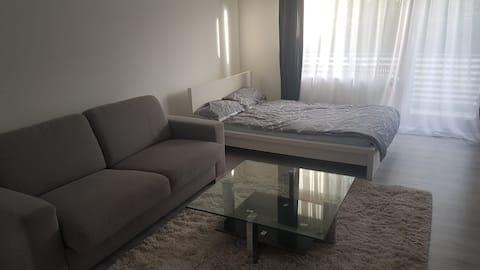 Ganze 1 Zimmer Wohnung in Leimen unweit ÖPNV