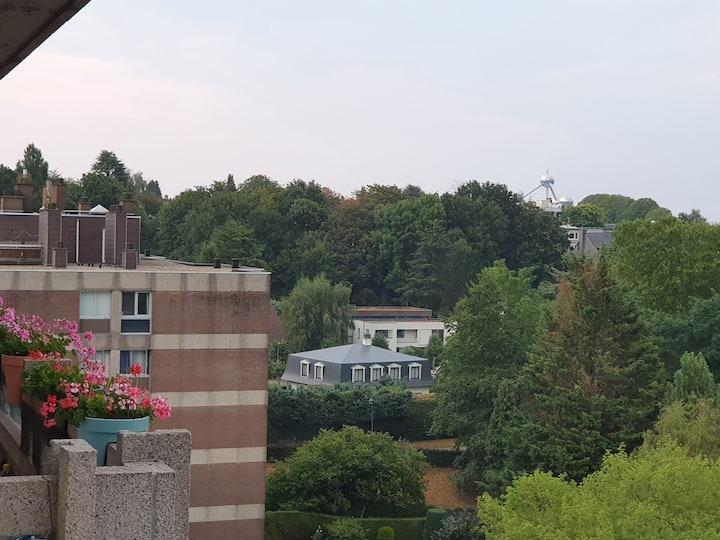 1Chb. dans 1 appt. vue Atomium, près de UZ Bxls.
