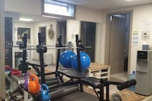 Free weights in gym