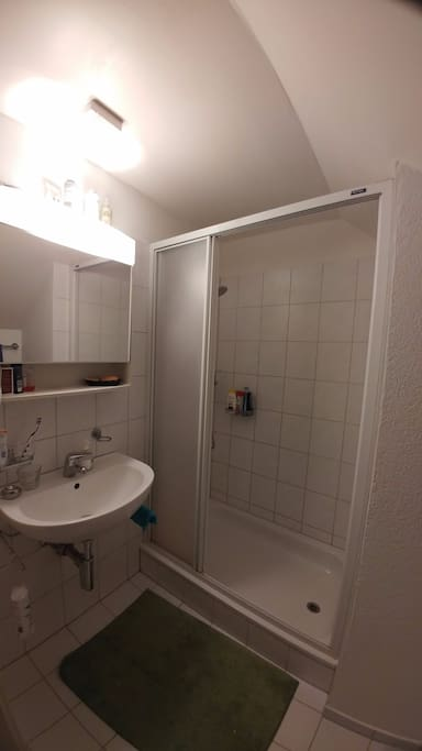 private bathroom with toilet and shower