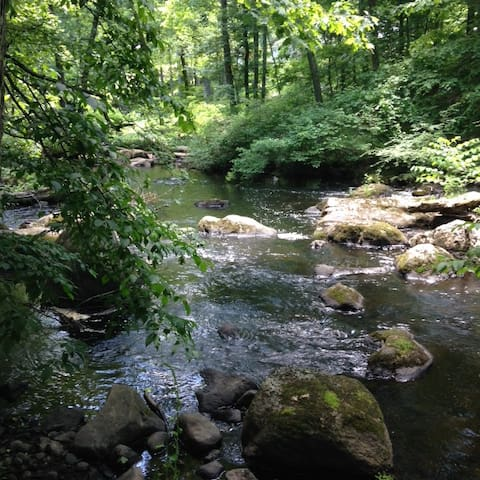 river  near zen house