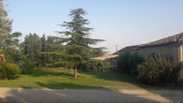 Countryside villa near the sea