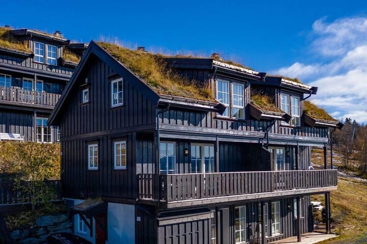 Flott leilighet i alpinbakken! Ski in/ski out!