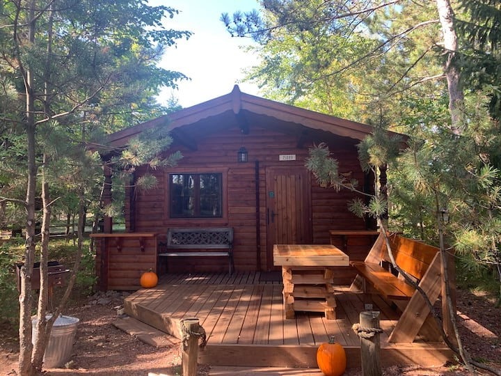 Honey Bear Hideaway-cabin in the heart of Hayward