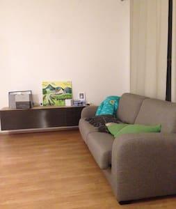 Very beautiful flat in Prague - Praha