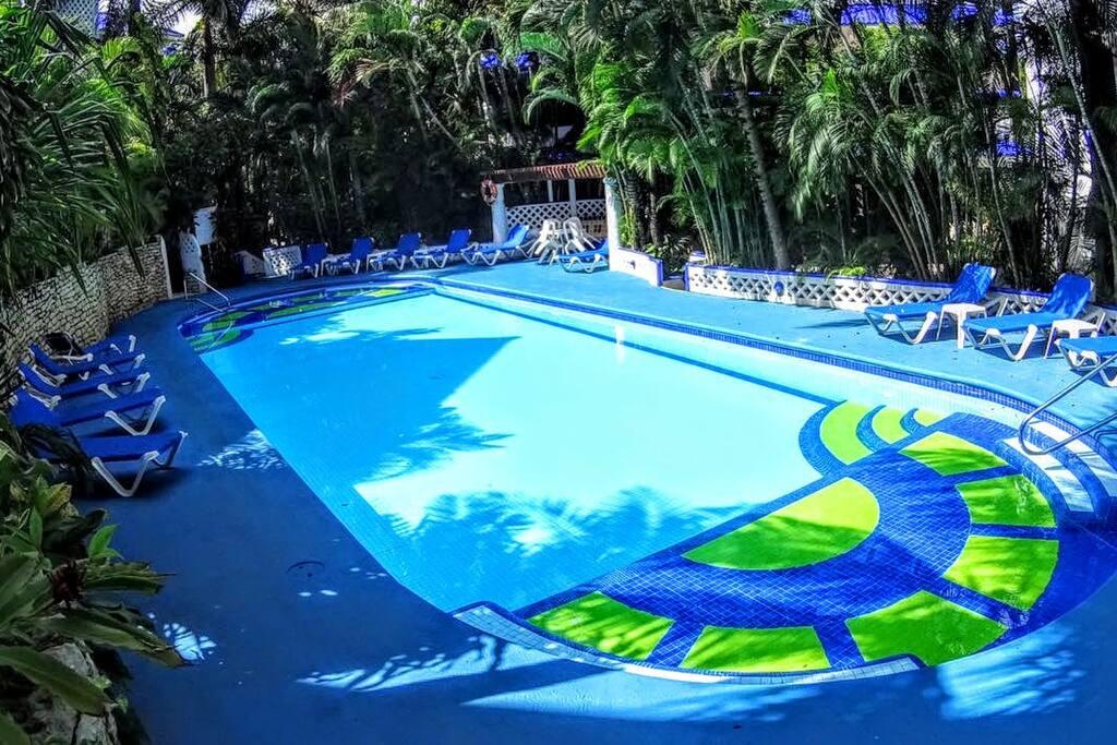 Beautiful Courtyard Pool Providing Sun and Shade