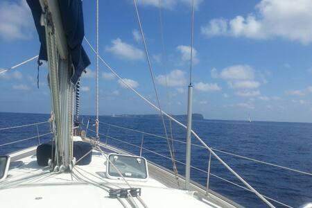 Ventotene in barca a vela - Ventotene - 船