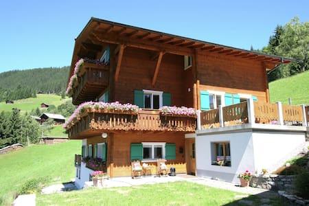Feudale Ferienwohnung in Silbertal mit Garten