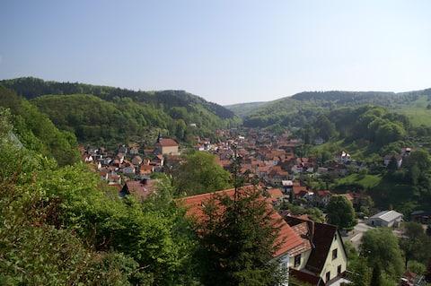 Moderne lejlighed i Thüringen Skov