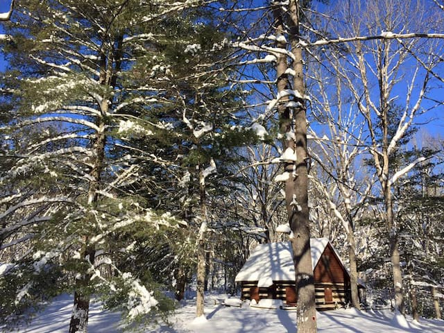 1830 Log Cabin w Loft, Views Access - Wardensville - Mökki
