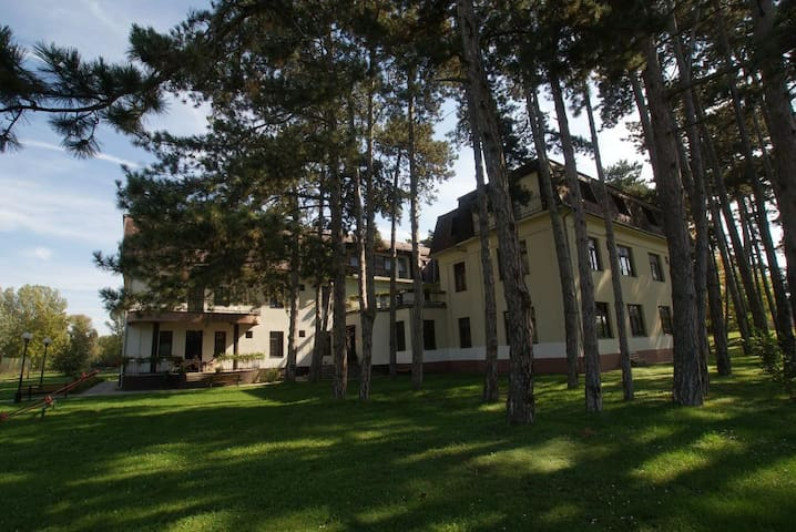 Hotel Stella close to the Lake Balaton