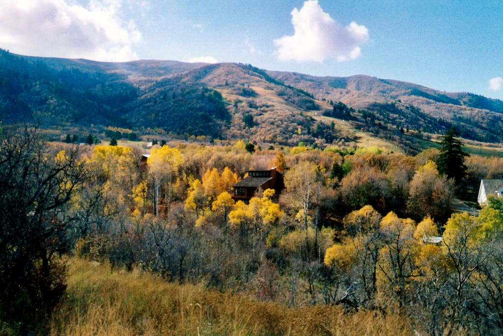 We are the Loose Moose Lodge! Your Private Moutain Retreat... Eden, Utah  (Ogden Valley)