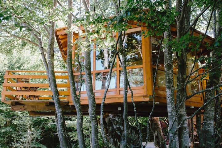 Treehouse Bosnia - Mountain Wood Apartments