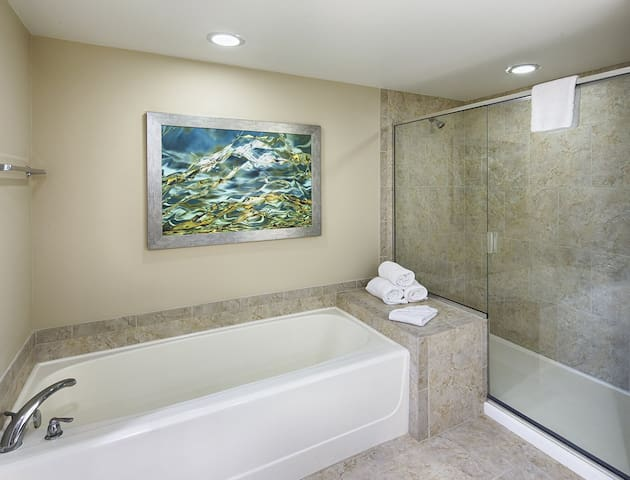 Large tub in Spacious Bathroom separate shower