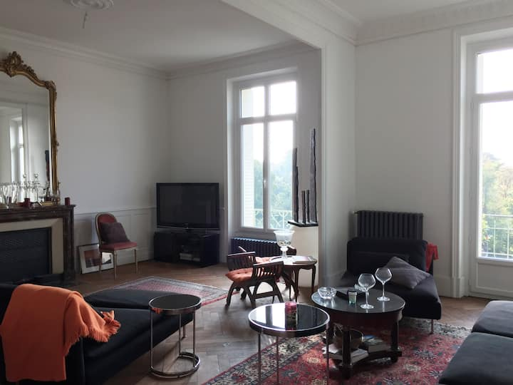 Grand appartement bourgeois hyper centre