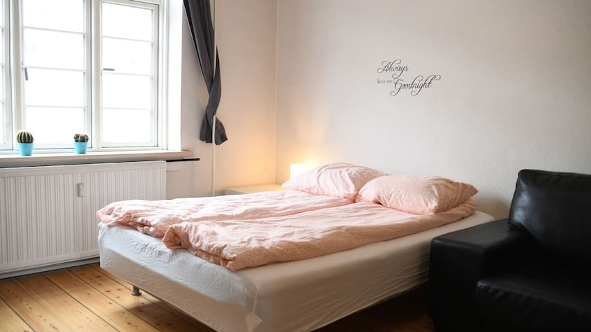 1 apartment room in central Odense)