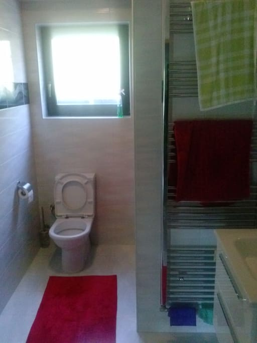Bathroom with a toilette