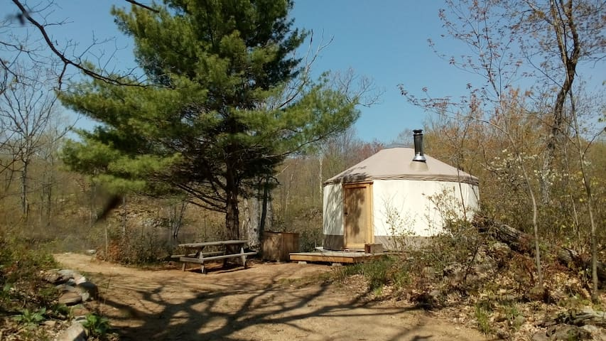 Salmon River Wilderness Camp: Yurt & 300 acres