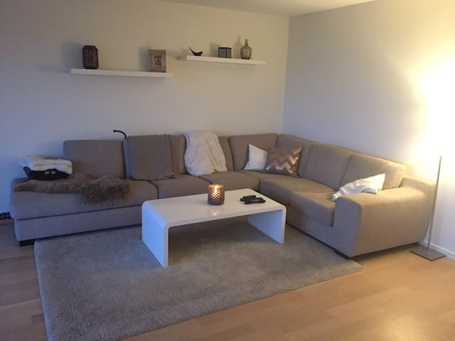 Great apartment with the best view in the city! - Oslo - Appartement