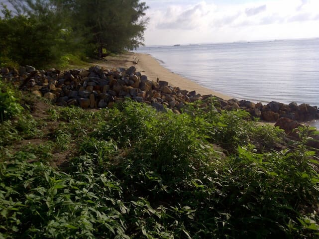Our hand built sea wall
