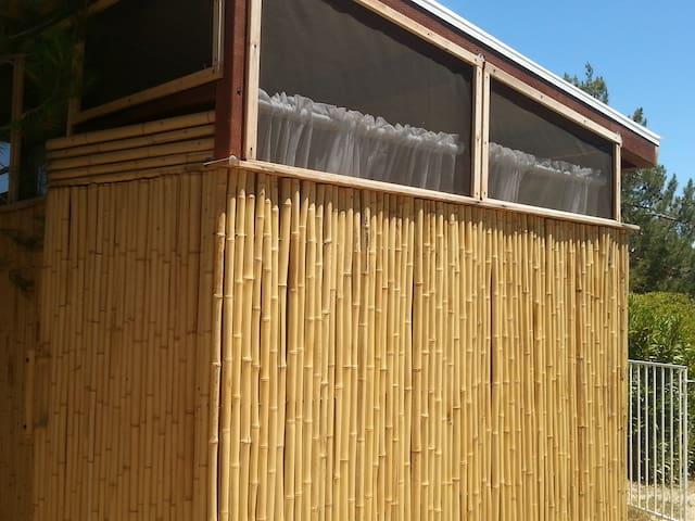 infrared sauna massage Tiki Hut