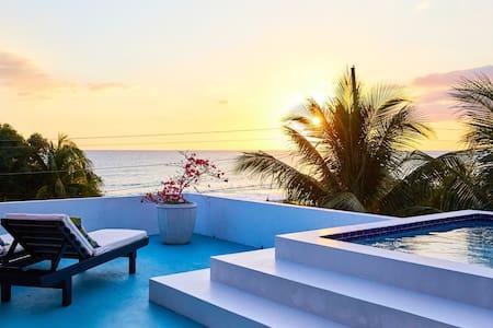Sea Urchin Treasure Beach-Rooftop Mini Villa