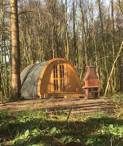 Camping pods in peaceful woodland