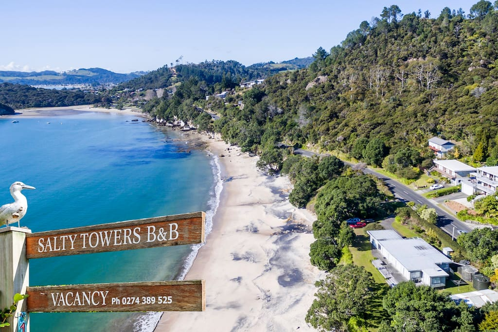A quiet location and close to town! It is a seven minute walk to Ferry Landing- from there it is a three minute ferry ride to Whitianga.