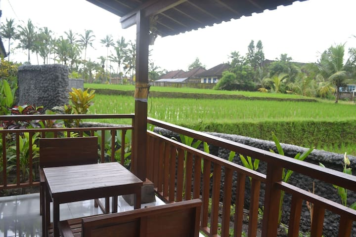 Tropical room in the rice field view