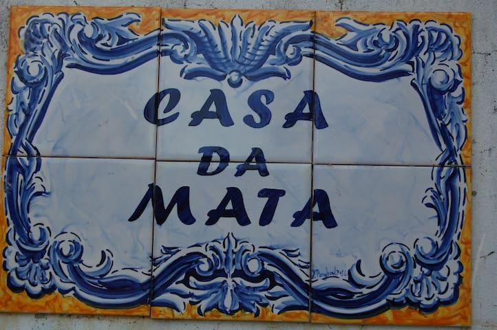 Casa de Montanha para descansar - Marco de Canaveses - Villa