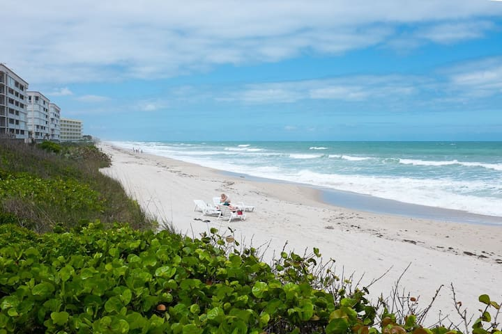 Relax and unwind on Florida's space coast! - Indian Harbour Beach - Appartement